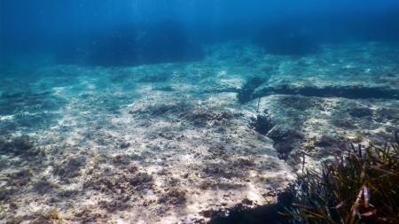 [궁금한S] 바다는 왜 짜고, 푸른색일까?…과학으로 풀어보는 바다의 신비
