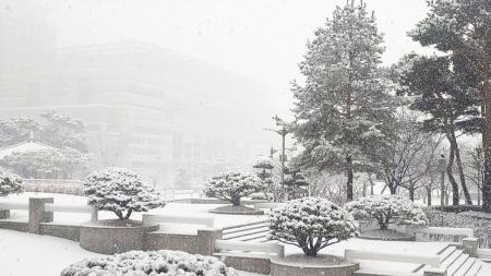 """[날씨학개론] """"1주일 걸러 폭설""""…올겨울 유난히 눈이 많은 이유는?"""