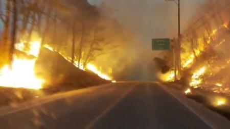 """[날씨학개론] 이례적으로 발생한 2월 산불…""""건조한 날씨와 강풍 원인"""""""