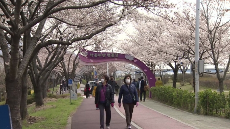 [사이언스 핫파이브] 코로나19로 봄맞이 주춤…3월 넷째 주 과학 이슈