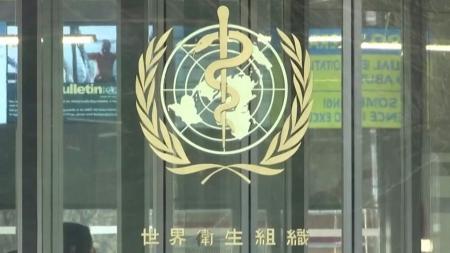 """WHO """"코로나19 인간 대 동물 전파 확인"""""""