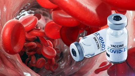 [사이언스 취재파일] AZ·얀센 백신 혈전 부작용 논란…현재 상황은?