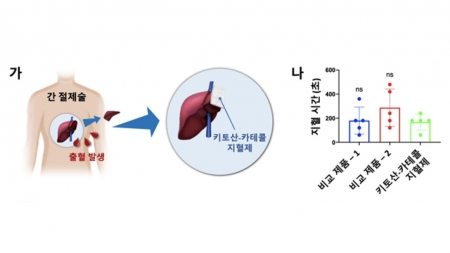 홍합 접착 물질 지혈 효과 증명…지혈제 상용화 추진