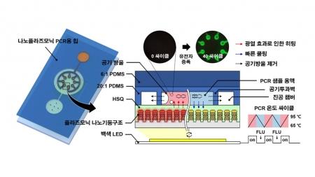 나노 금속기판 활용 PCR 검사 10분 내로 단축