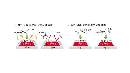 자연계 효소 원리 모방해 새로운 산업 촉매 개발
