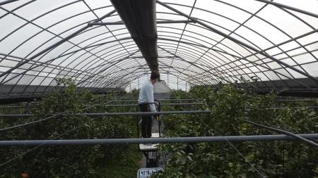 생산기술연구원, 다기능 수행하는 농작업 로봇 개발