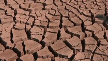 [날씨학개론] 대가뭄에 신음하는 '브라질'…기후위기 현실화