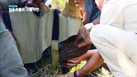 검은코뿔소 구출작전