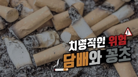 자연에도 치명적인 위험! 담배와 꽁초