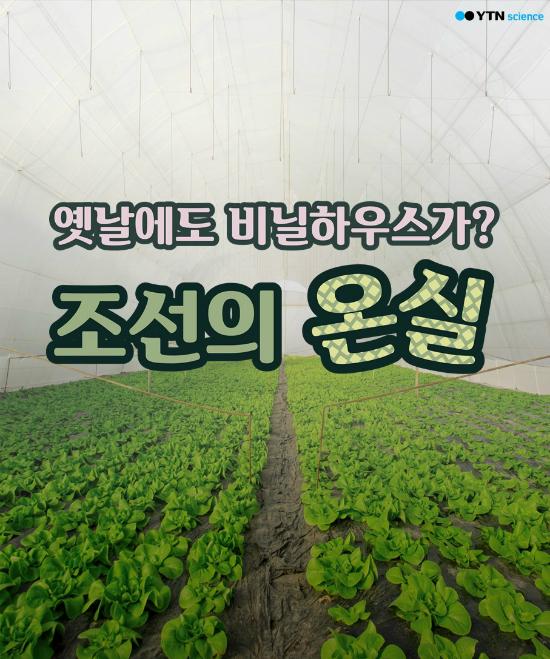옛날에도 비닐하우스가? 조선의 온실 이미지