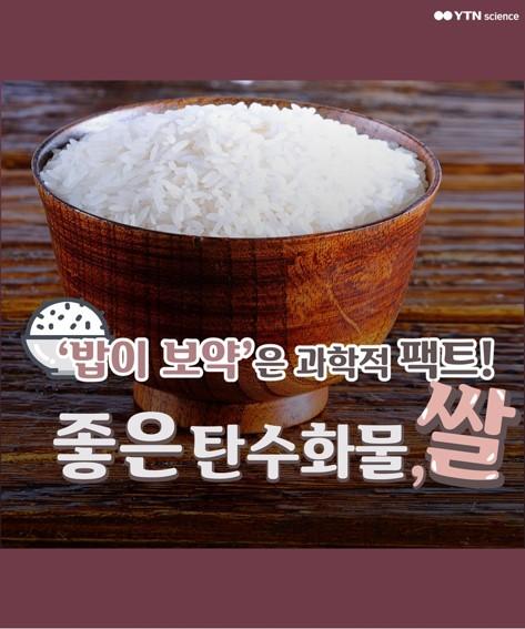 '밥이 보약'은 팩트! 좋은 탄수화물 '쌀' 이미지