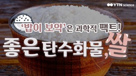 '밥이 보약'은 팩트! 좋은 탄수화물 '쌀'