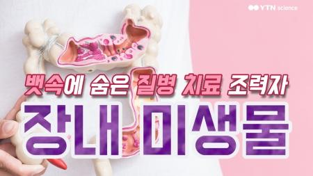 뱃속에 숨은 질병 치료 조력자 '장내 미생물'