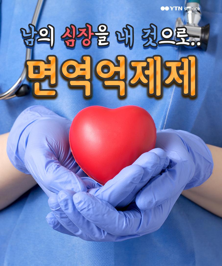 타인의 심장을 내 것으로…면역억제제 이미지