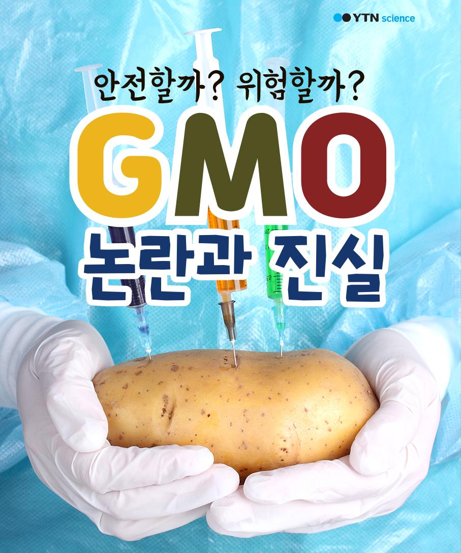 안전할까? 위험할까? 'GMO' 논란과 진실 이미지