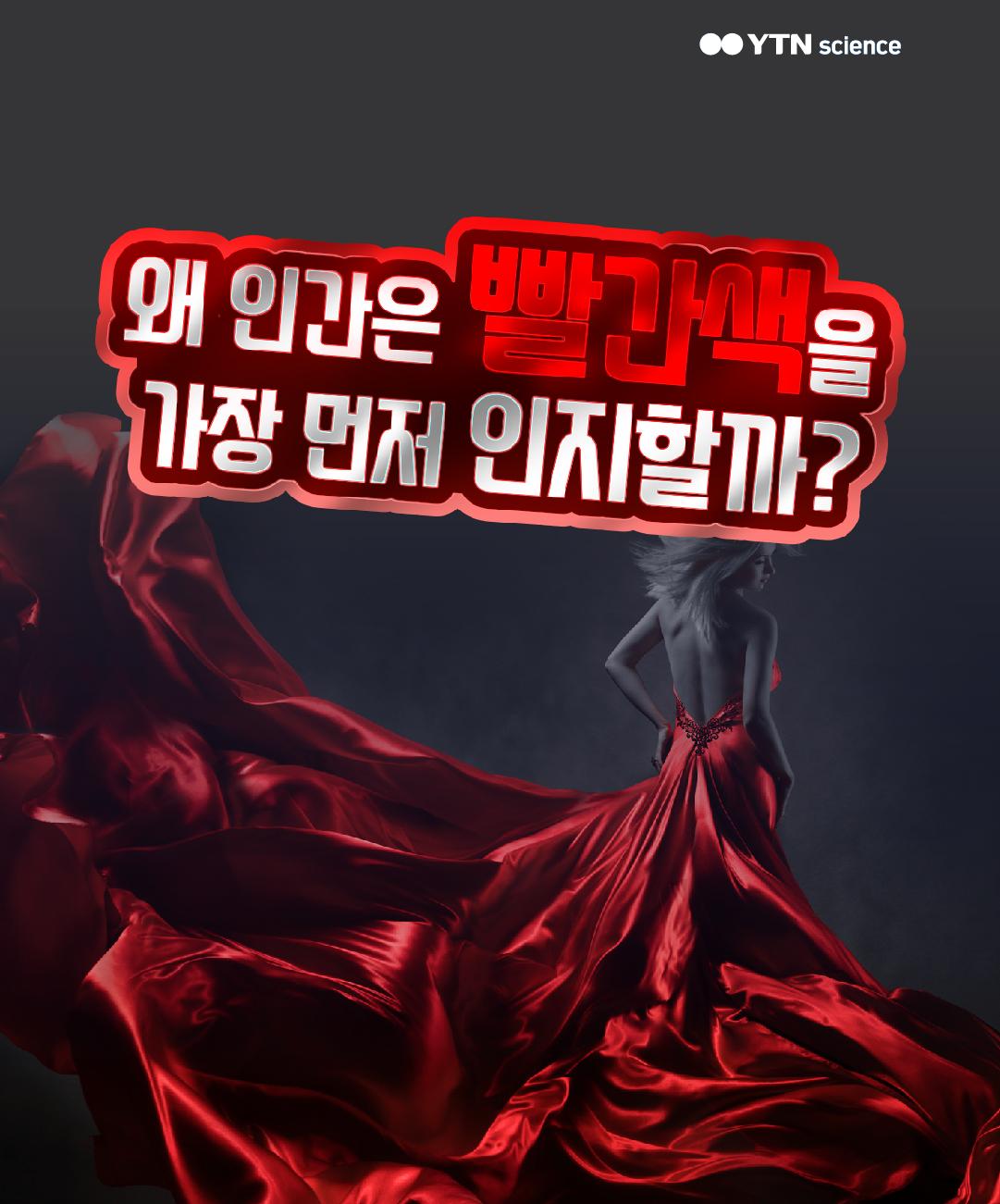 왜 인간은 빨간색을 가장 먼저 인지할까? 이미지