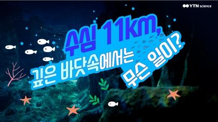 수심 11km, 깊은 바닷속에서는 무슨 일이?