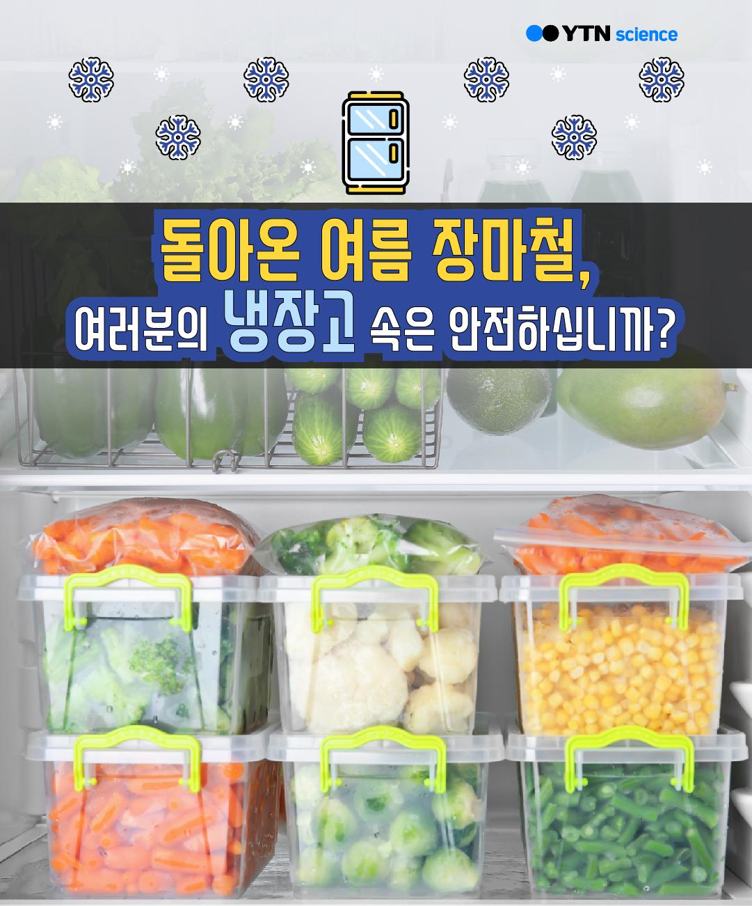 돌아온 여름 장마철, 여러분의 냉장고는 안전하십니까? 이미지