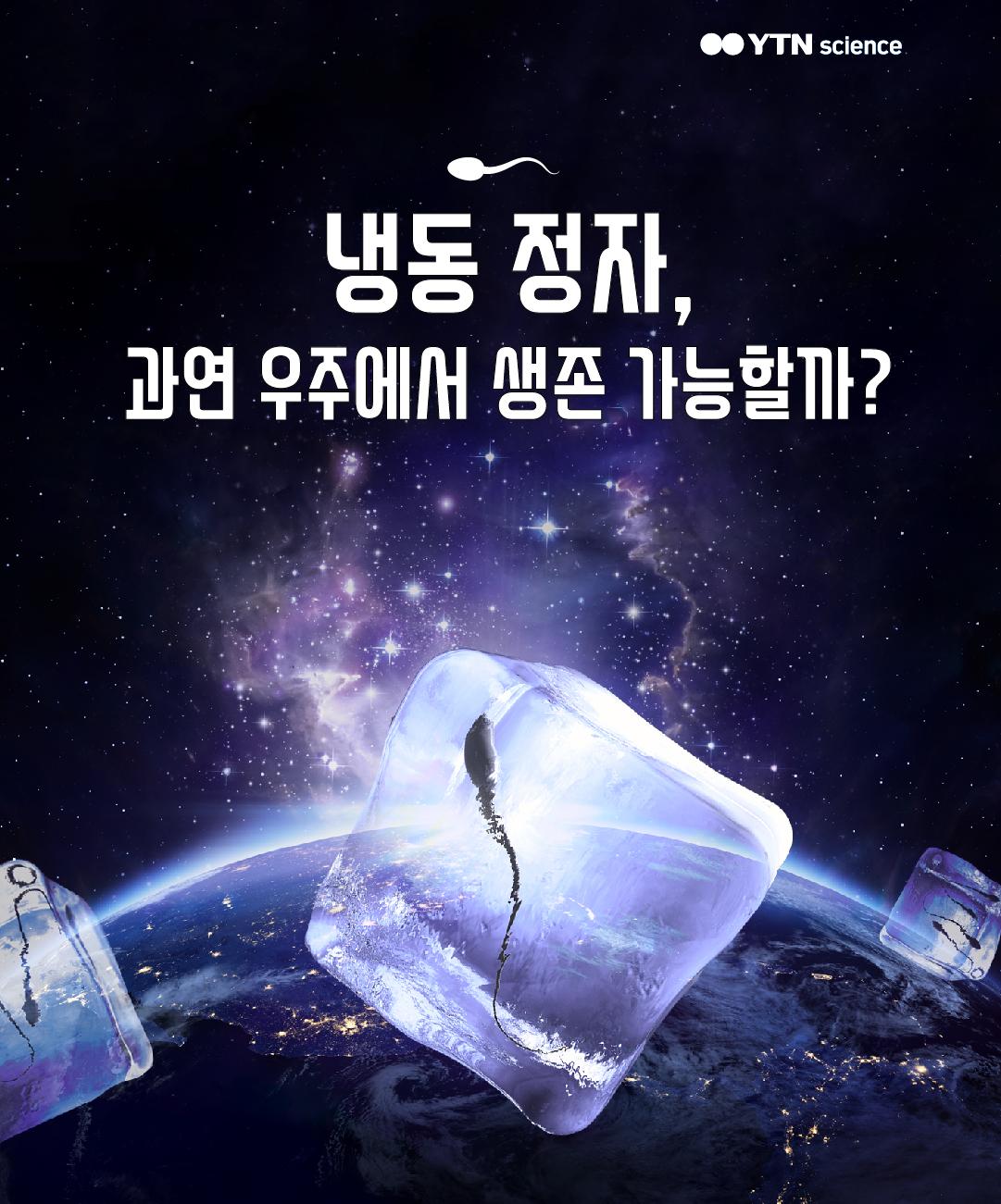 냉동 정자, 과연 우주에서 생존 가능할까? 이미지