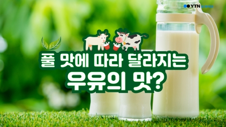 풀 맛에 따라 달라지는 우유의 맛?