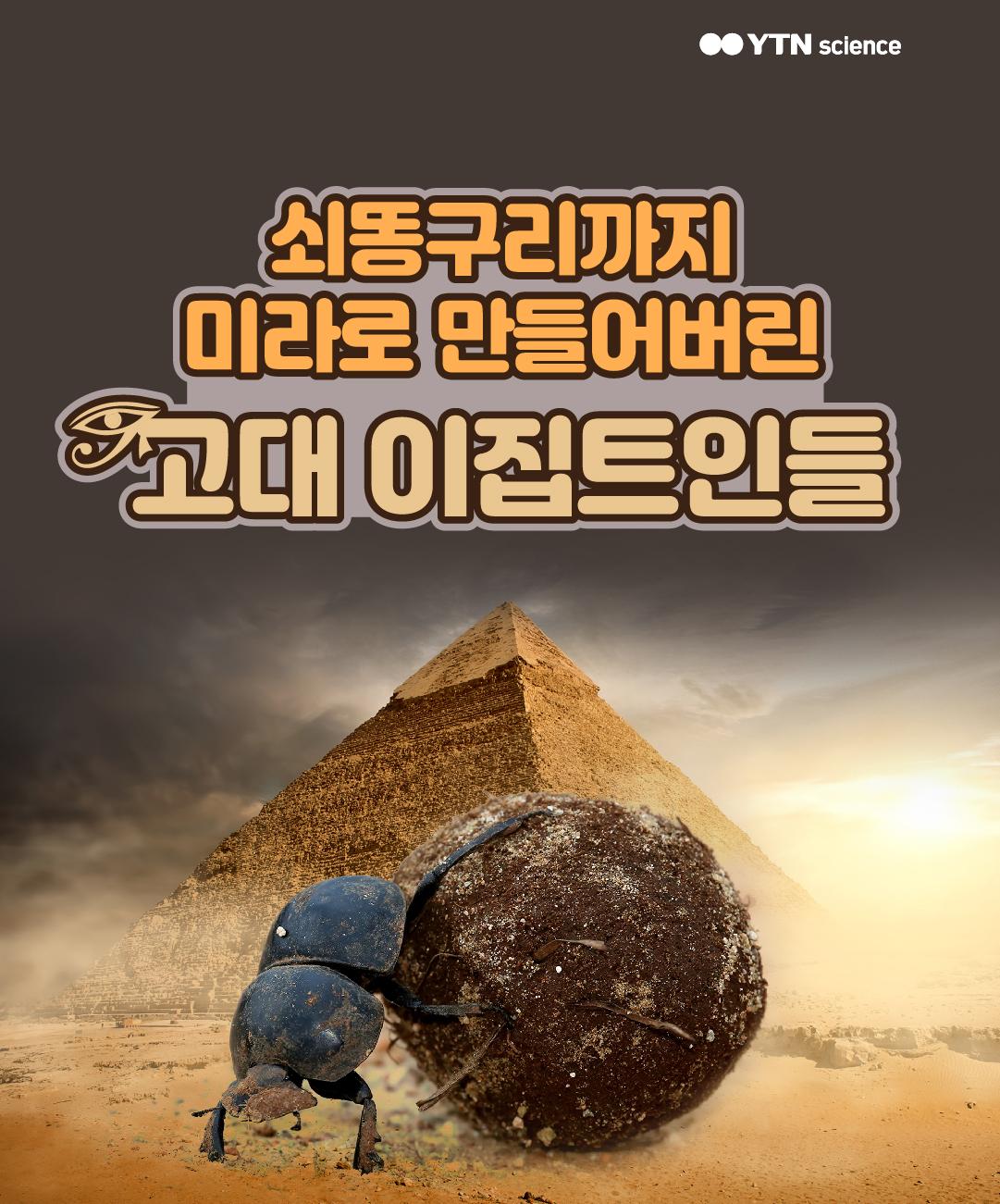 쇠똥구리까지 미라로 만들어버린 고대 이집트인들 이미지