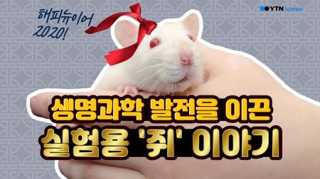 생명과학 발전을 이끈 실험용 '쥐' 이야기