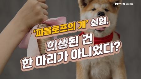 '파블로프의 개' 실험, 희생된 건 한 마리가 아니었다?