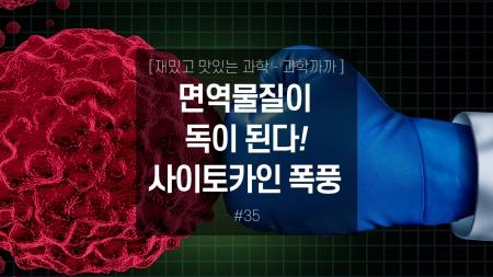 면역물질이 독이 된다! 사이토카인 폭풍