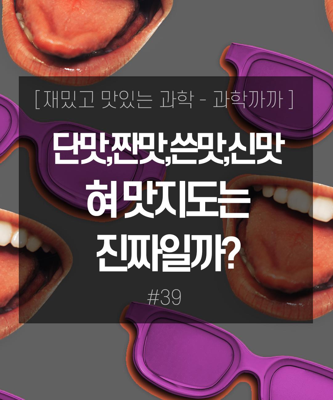 단맛,짠맛,쓴맛,신맛! 혀 맛지도는 진짜일까? 이미지