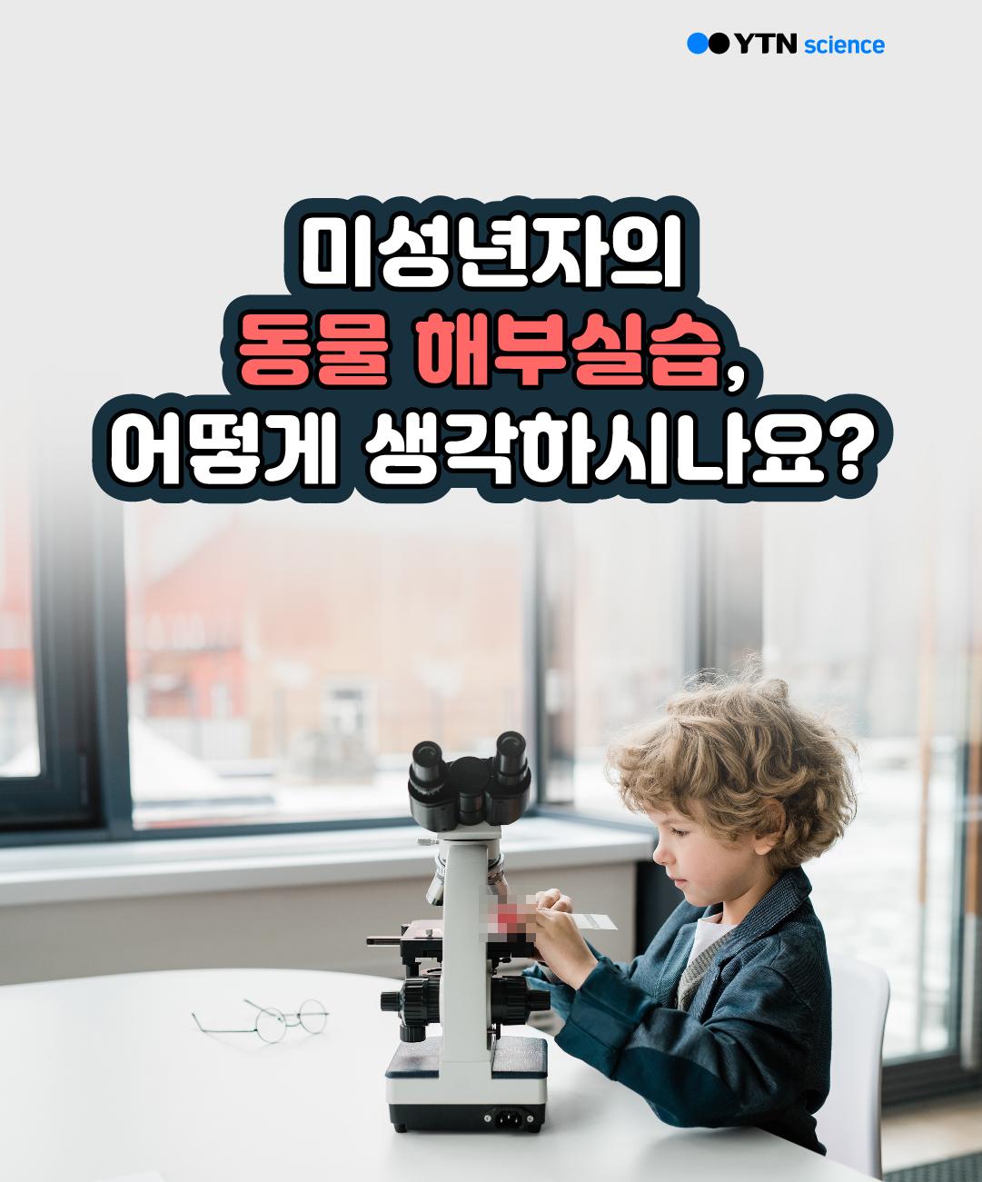 미성년자의 동물 해부실습, 어떻게 생각하시나요? 이미지