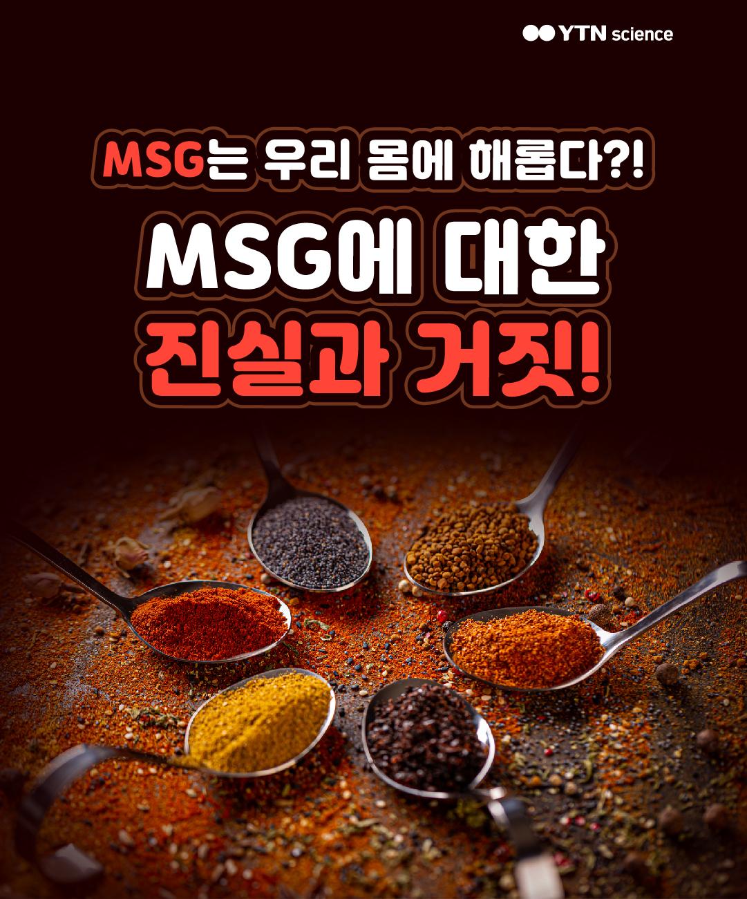MSG는 우리 몸에 해롭다?! MSG에 대한 진실과 거짓! 이미지