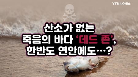 산소가 없는 죽음의 바다 '데드 존', 한반도 연안에도…?