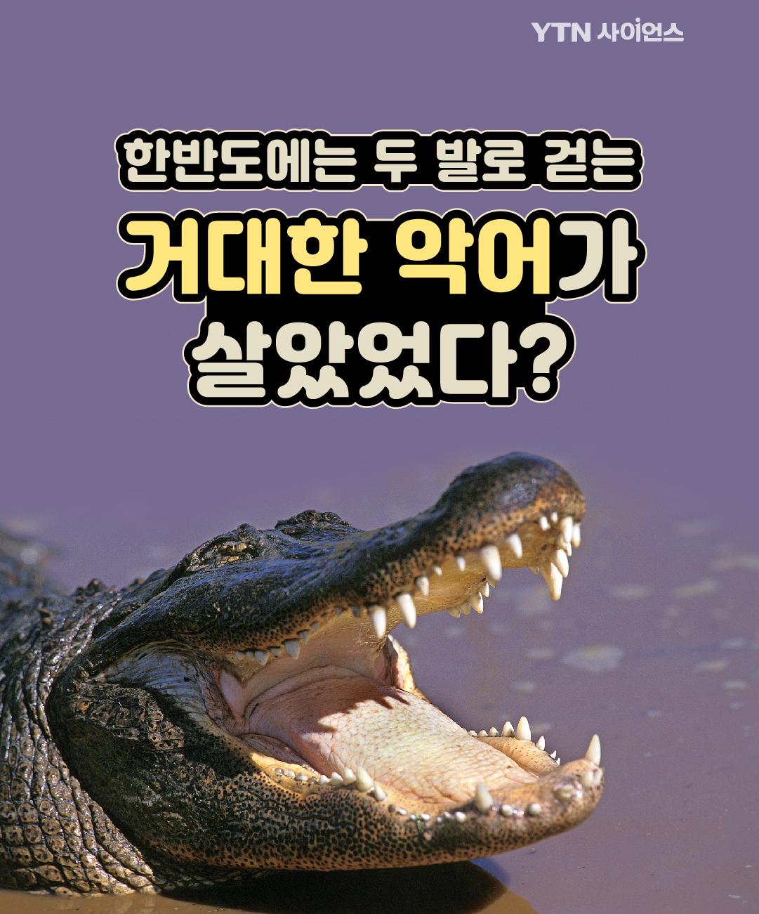 한반도에는 두 발로 걷는 거대한 악어가 살았었다? 이미지