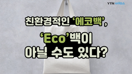 친환경적인 '에코백', 'Eco'백이 아닐 수도 있다?