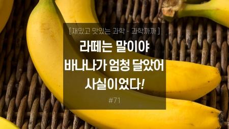 라떼는 말이야 바나나가 엄청 달았어! 사실이었다!