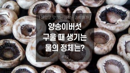 양송이버섯 구울 때 생기는 물의 정체는?
