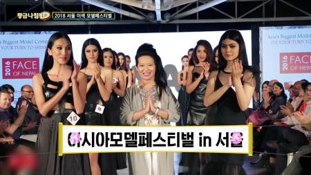 [황금나침반] 서울에서 즐기는 이색 모델 페스티벌