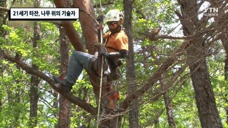 21세기 타잔, 나무 위의 기술자