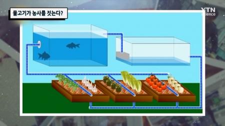 물고기가 농사를 짓는다?