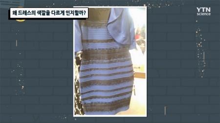 왜 드레스의 색깔을 다르게 인지할까?