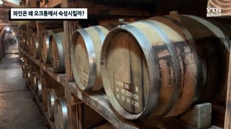 와인은 왜 오크통에서 숙성시킬까?