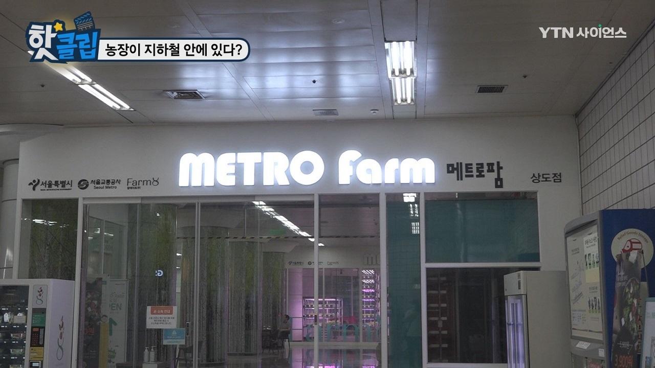 농장이 지하철 안에 있다?