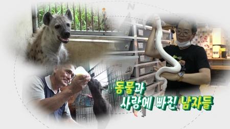[황금나침반] 동물과 사랑에 빠진 남자들