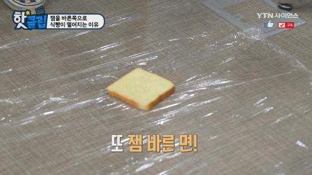 잼을 바른쪽으로 식빵이 떨어지는 이유