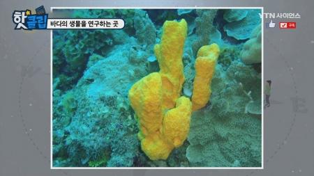 바다의 생물을 연구하는 곳