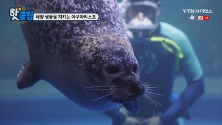 해양 생물을 지키는 아쿠아리스트