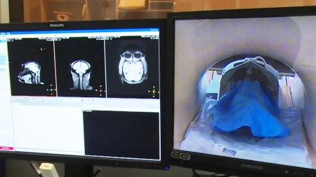 1.4kg 뇌의 비밀을 밝혀라! <br>-  한국생명공학연구원 국가영장류센터