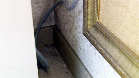 우리 집 벽 속에 '암세포'가 숨어있다! 반 지하 곰팡이&라돈