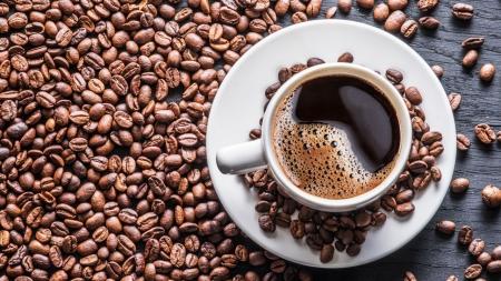 카페인을 아시나요?