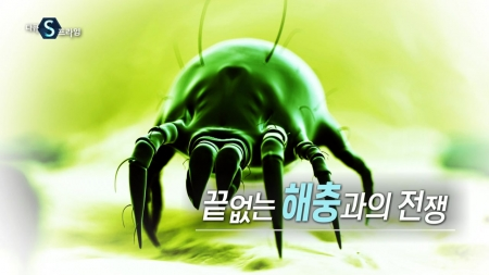 끝없는 해충과의 전쟁